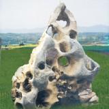 太湖石02