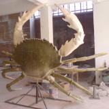 动物雕塑07